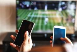 Advocado Ripens Platform to Boost Cross-Platform Ads